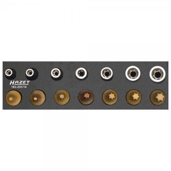 Hazet Werkzeug-Satz, TORX 163-251/14 - Vierkant hohl 6,3 mm (1/4 Zoll) - Außen